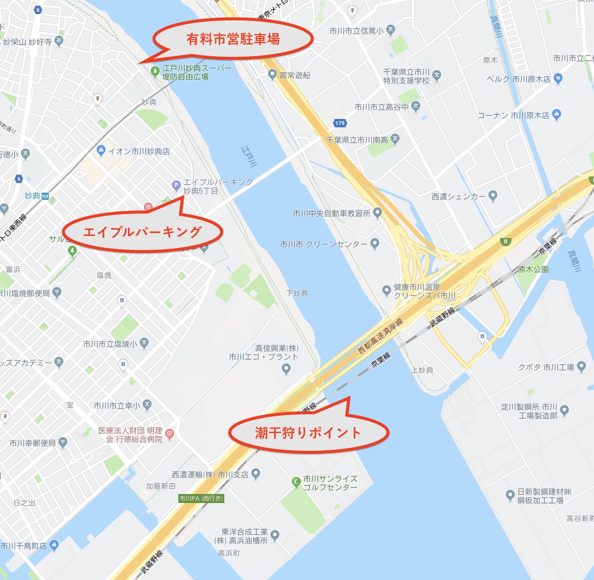 ハゼ 2019 放 水路 江戸川