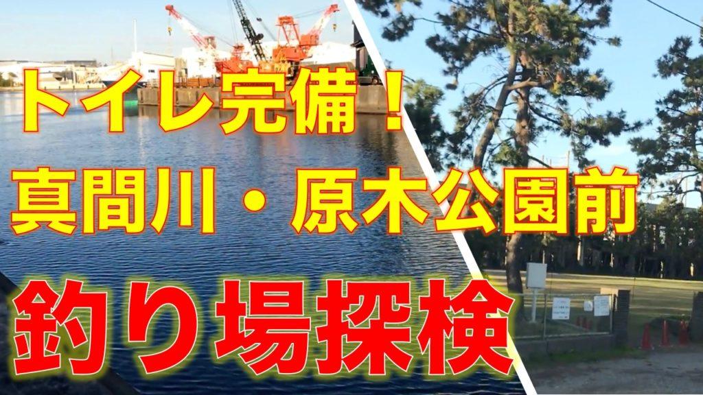 江戸川放水路そば!トイレが完備された原木公園前の真間川河口はクロダイ、シーバスが狙える
