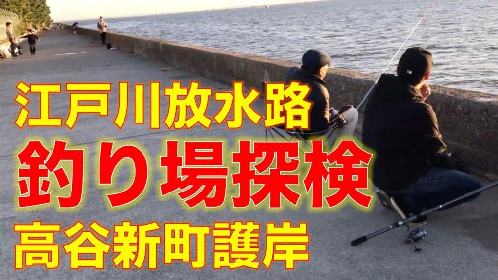 江戸川放水路河口、高谷新町護岸の釣り場と釣れる魚を解説