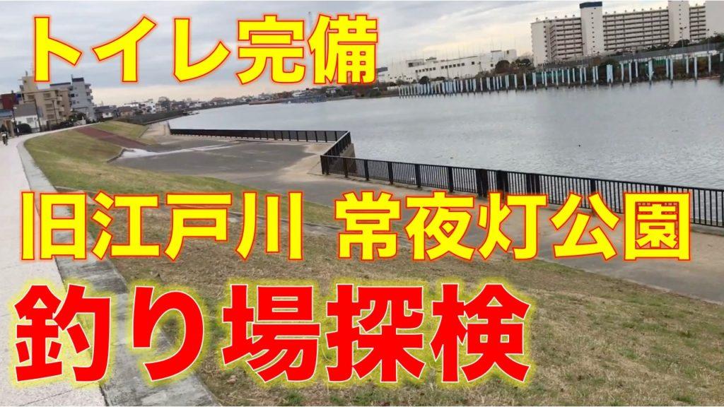 旧江戸川の常夜灯公園に釣り場の下見に行ってみました